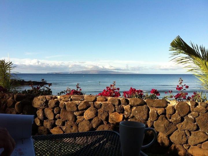 Ocean View!  Following Air BnB Clean Protocol