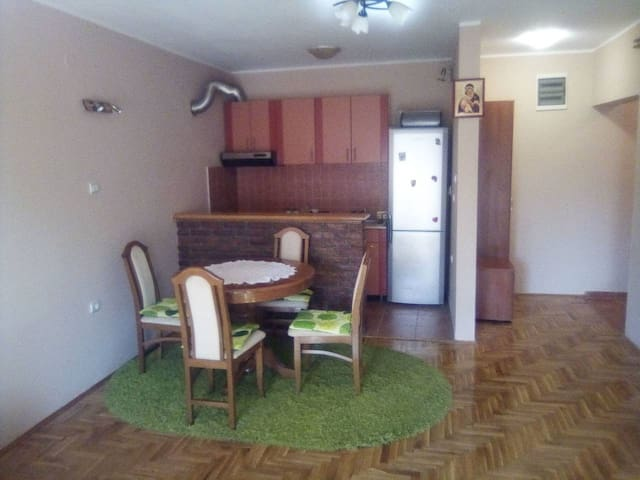 Obrenovac main street apartment