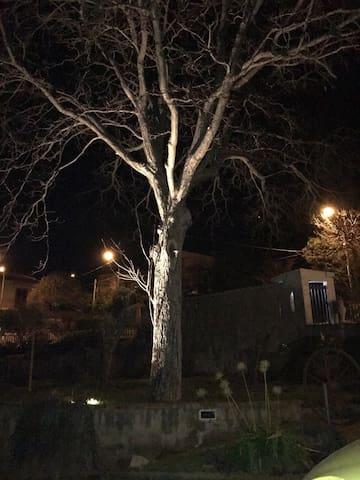 Villa in campagna soggiorni/eventi - Sant'Angelo a Cupolo - Villa