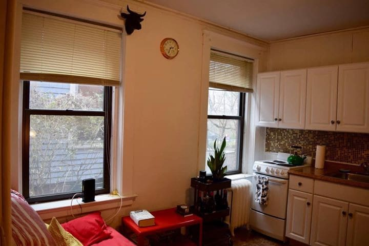 1 bd apartment in East Rock