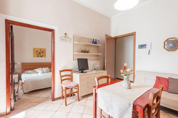 Casa Pettini : Grazioso bilocale in città d'arte - Arezzo - Apartamento