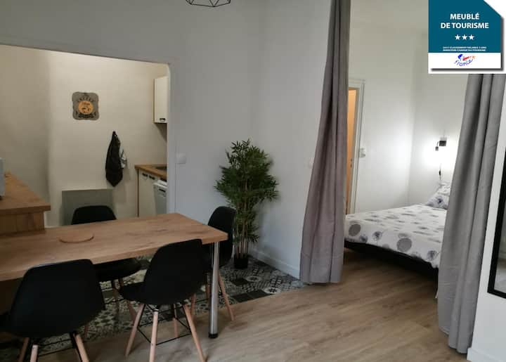 Appartement les Regrattiers 3*