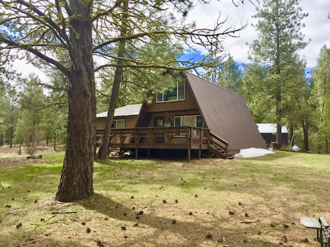 Very private cabin on 5 acres