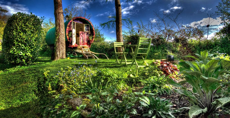 A night under the stars in a Cornish Gypsy Caravan