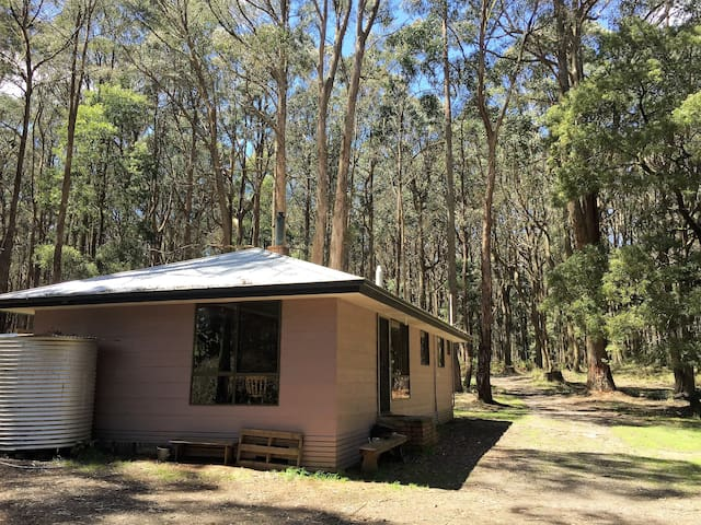 Wombat Forest Retreat - Bullarto South - Casa
