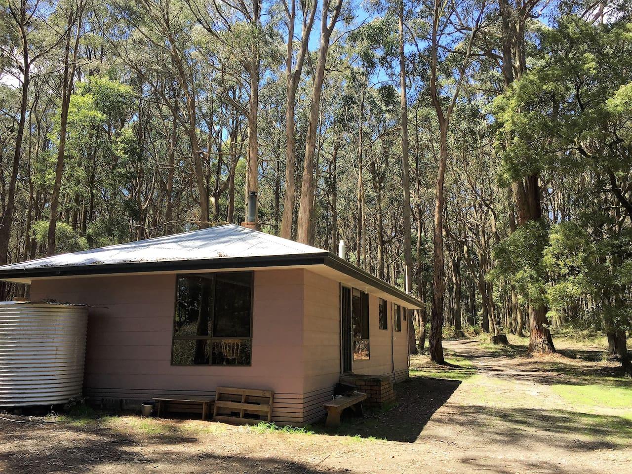 Wombat Forest Retreat cottage