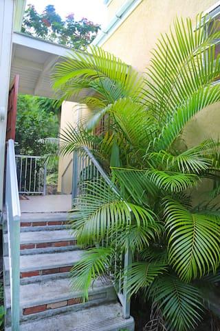 Traveler Palm Cottage, Newly built home sleeps 6