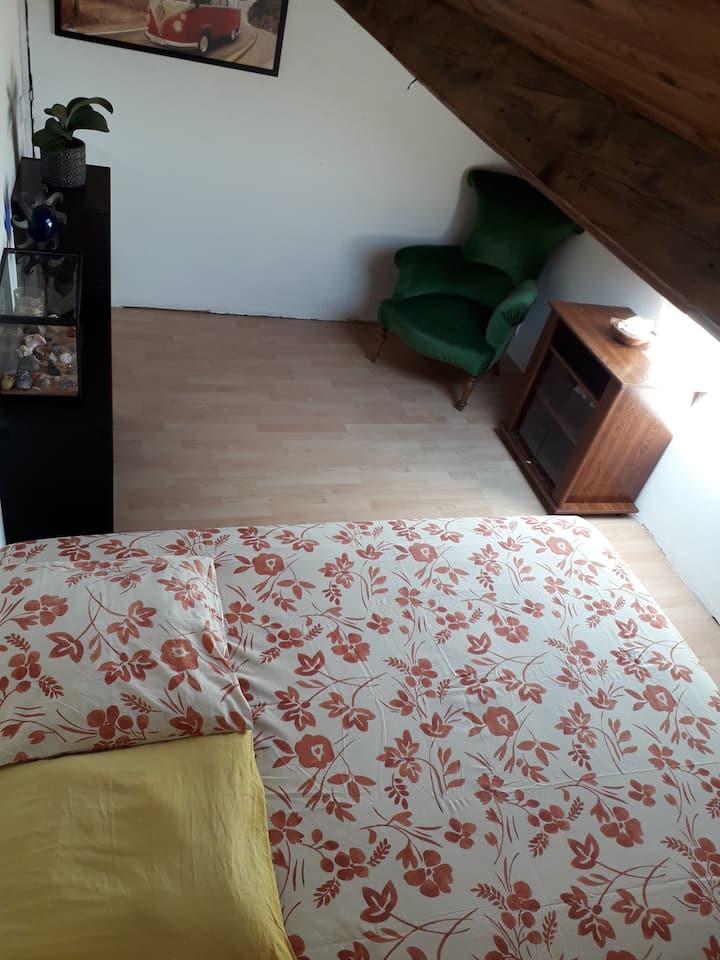 Charmant appartement mansardé