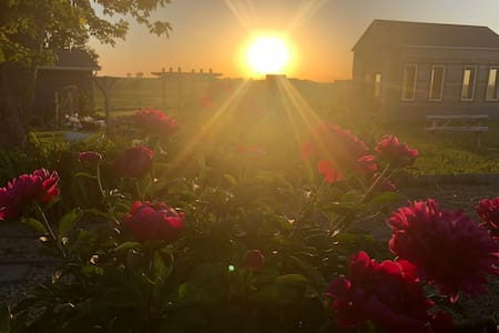 The Cupola - Beautiful Acreage- Sunrise /Sunsets