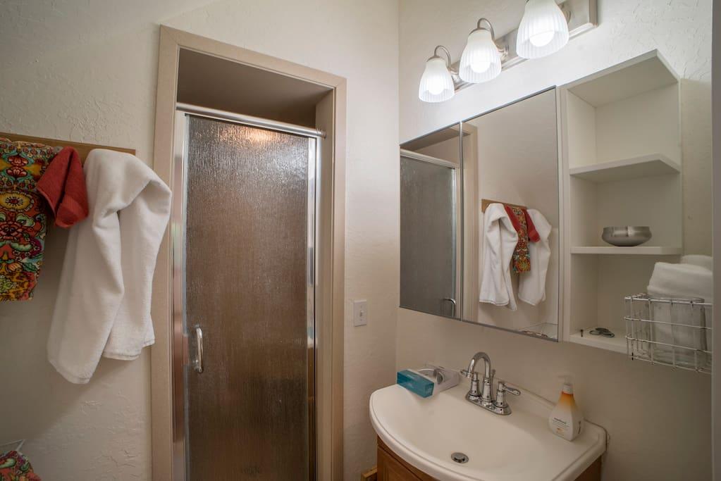Back-shack bathroom w/shower