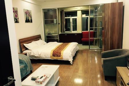 豪华经典套房 - 长春 - 公寓