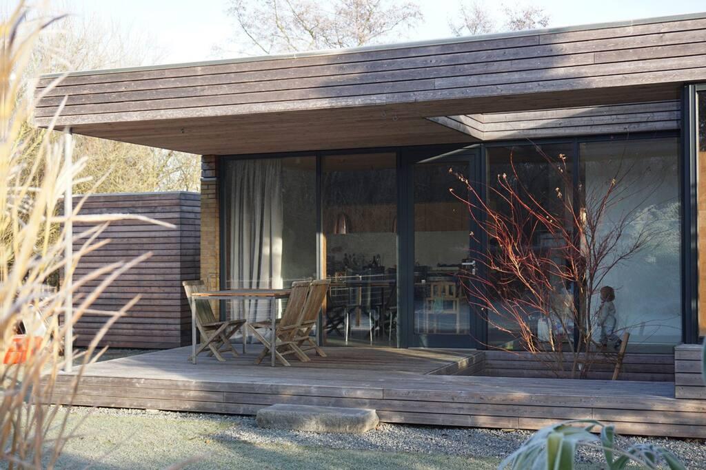 Eingang / Terrasse mit Baumausschnitt