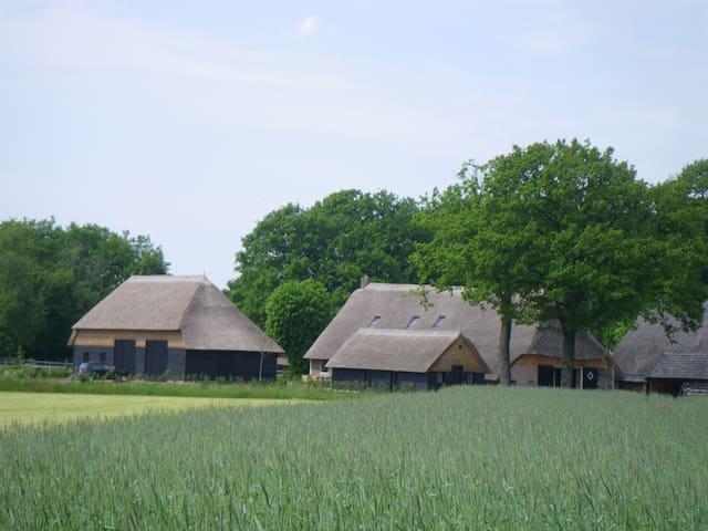 Boerderijlodges in monumentale boerderij, Drenthe - Dwingeloo - Huis