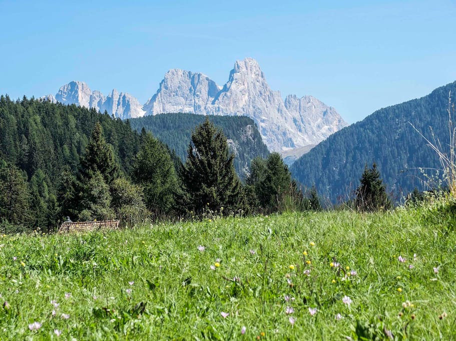 View on the Pale di San Martino - right in front of the apartment