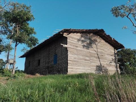 LVの小屋