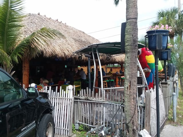 Go to Captain Curt's tiki bar and enjoy the music
