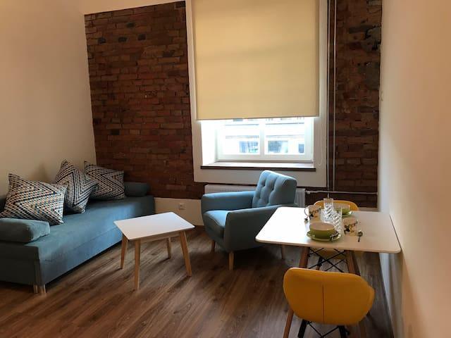 A cozy new Filosoofi studio apartment near center.