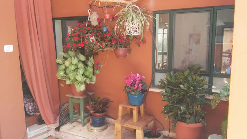Single Family Home with garden - Haifa - Huvila