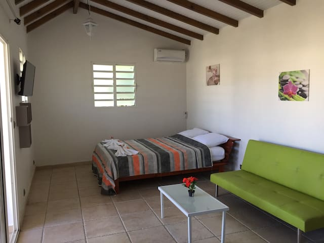 chambre + coin salon