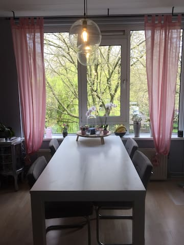 Nice small App. near city centre and TU with cat - Delft - Apartamento