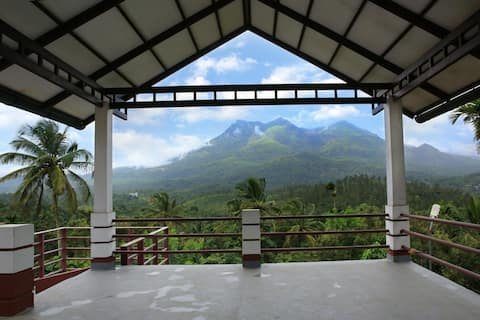 mountain view in the midst of a plantation