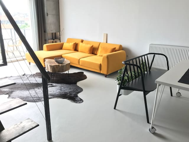 Loft apartment with industrial design| city center