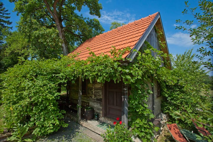 Cottage Juraj - traditional cottage - Donja Stubica - Hytte