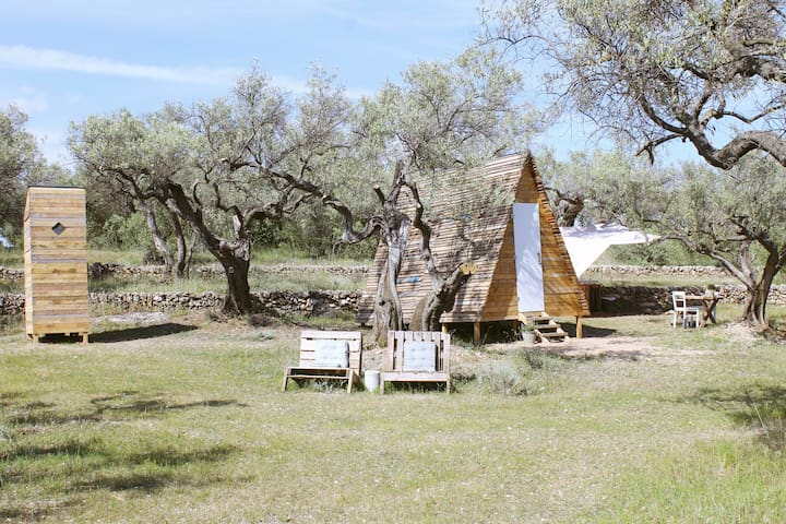 Unique eco cabin among the olive trees