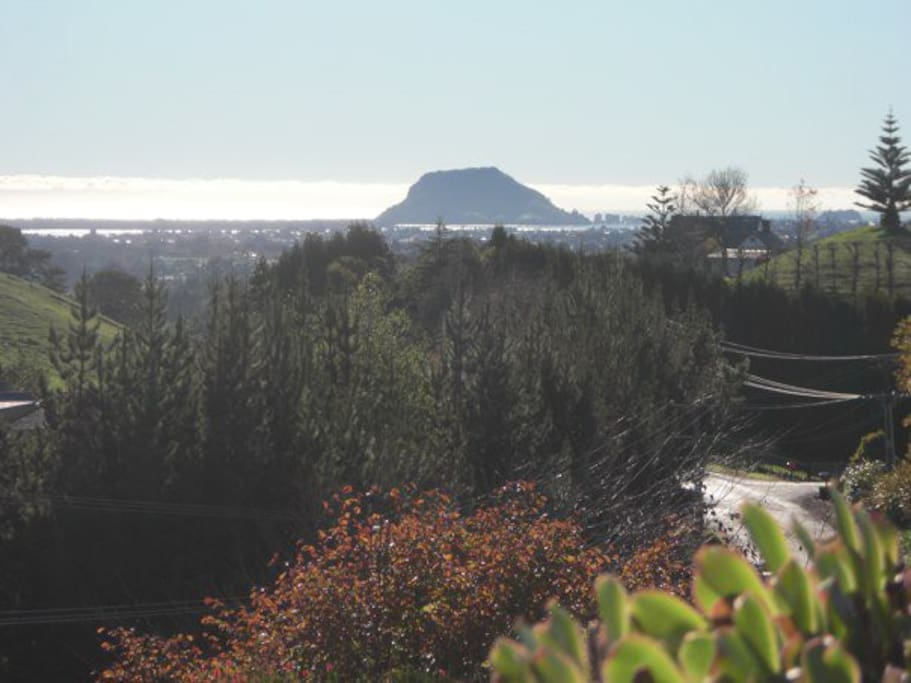 View to Mauo Mount Maunganui