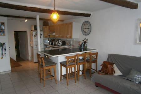 Charmante maison de village - Puget-Ville - Hus