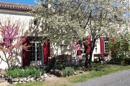A la découverte du vignoble de Cyrano de Bergerac