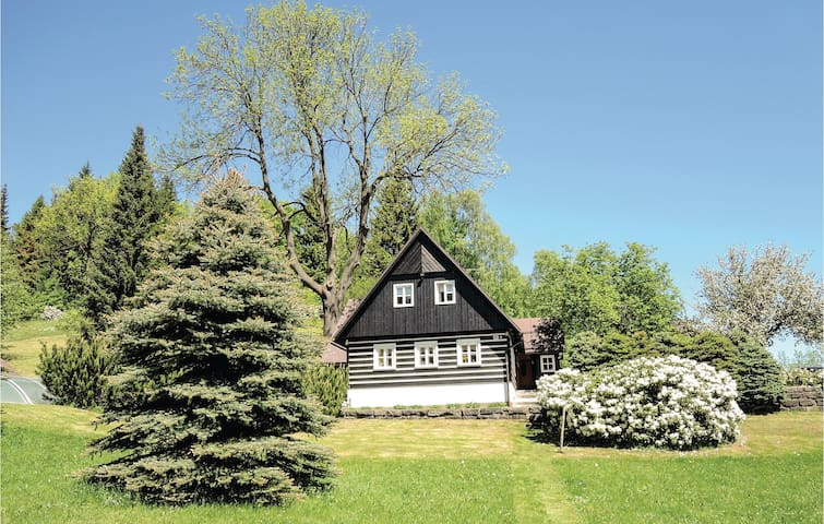 Holiday cottage with 2 bedrooms on 119 m² in Janov nad Nisou