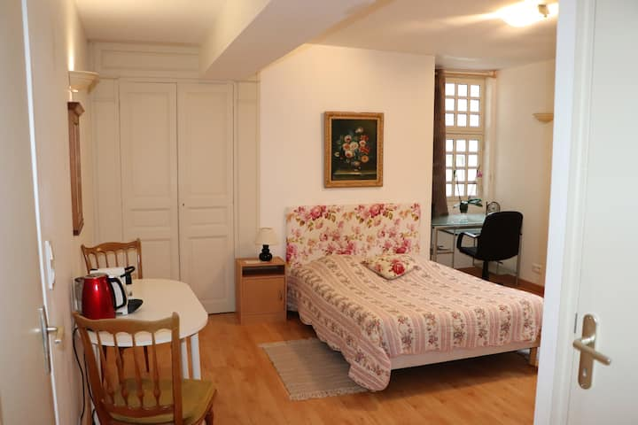 Logement cosy plein coeur d'Auxerre, rue piétonne.