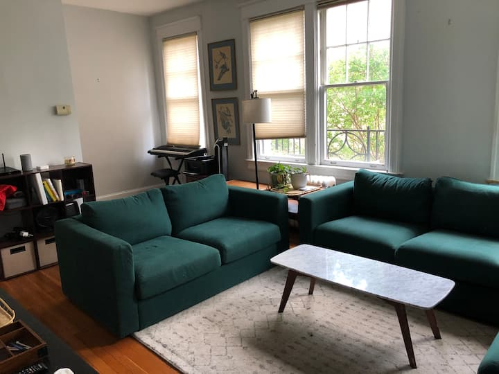 Beautiful 1 bedroom located in prime location