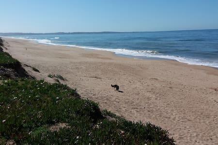 La mejor playa Punta del Este - Ocean Park !!!
