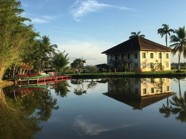 Ilha do Marajó - Pa, Fazenda Carmo, paz e sossego
