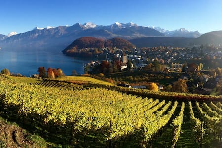 The Berner Oberland Gateway - Spiez - Daire