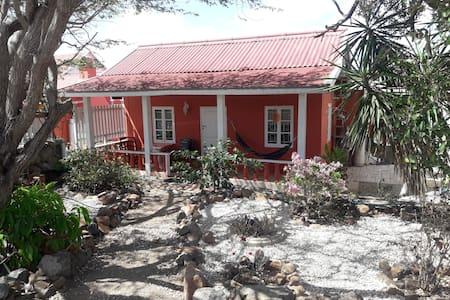 Peaceful and affordable in Aruba's bonita nature
