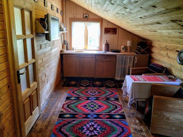 kitchenette in living room