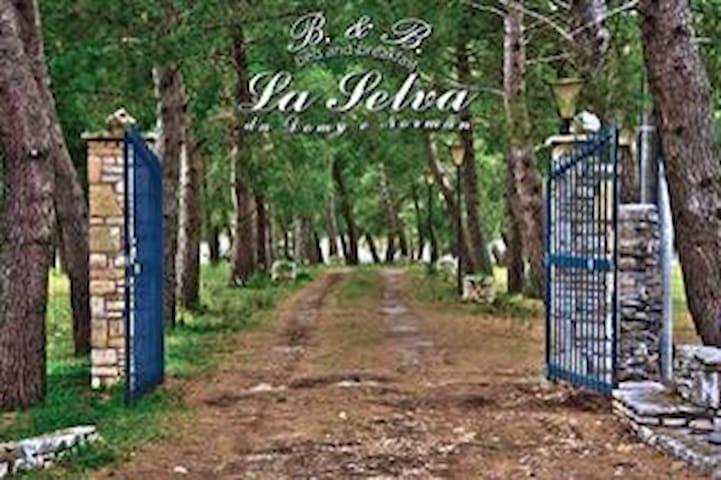 B&B La Selva - Norman&Domy Stanza 1