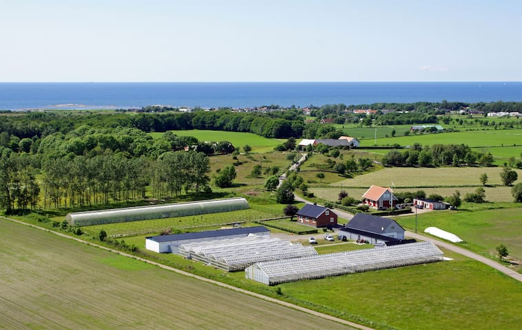 Stay at an old garden nursery close to the sea