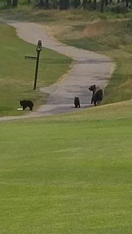 Mom and the cubs by the bell on the 3rd hole at JPL