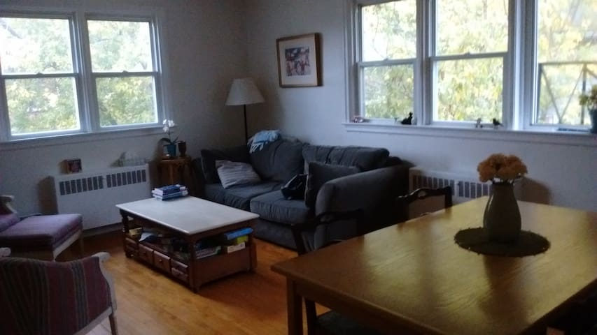 A Room With a View: Convenient, Quiet, Welcoming - Kingston - Appartement