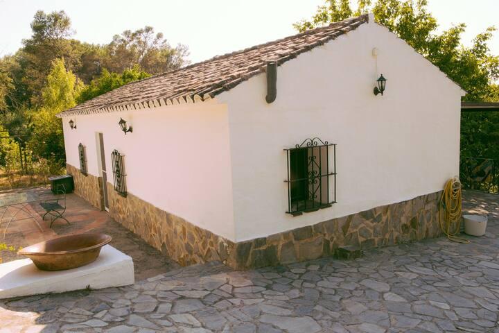 Casa rural en plena sierra de Grazalema