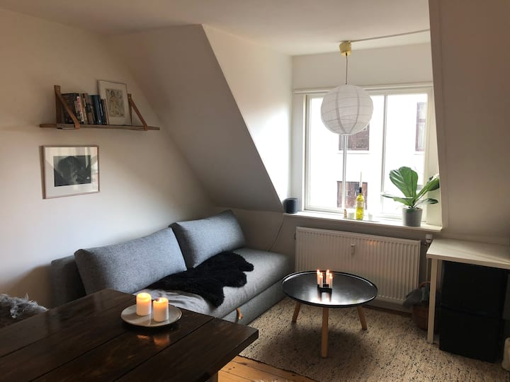 Super Cozy Appartement Close to Amagerbro Metro