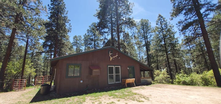 Cozy Wooded Retreat! Lake access,35 min to Durango