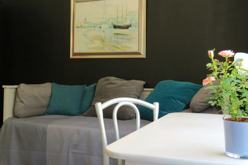 Vierashuone.  Avattava parivuode. /  Guestroom. Bed for 1-2 person.