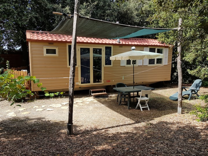 Agriturismo Podere Novo 153 - Mobile Home