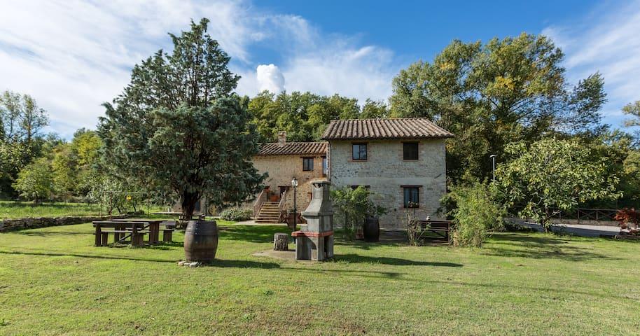 Apartment Zafferano - Piegaro - Apartment