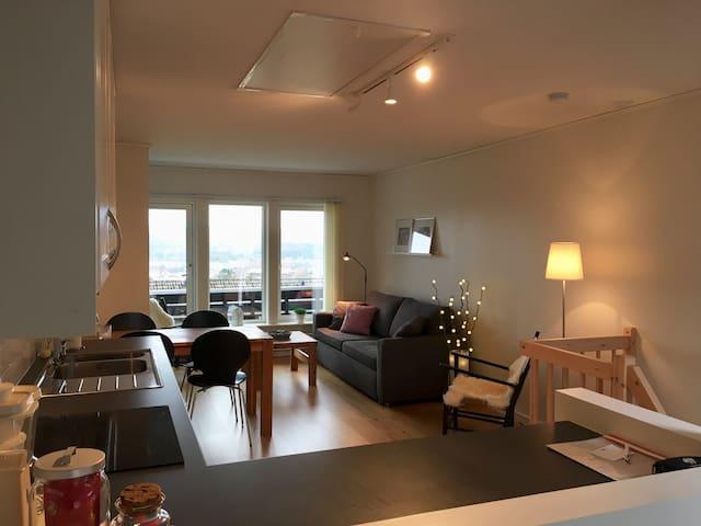 Koselig leilighet på 50 kvm med utsikt og hage